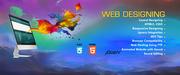 Web Design (4 Months on the Job Training)