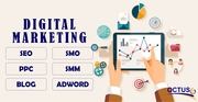 Octus Provide Advance Digital Marketing Course in Noida