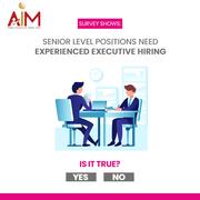 senior level recruitment consultants in delhi