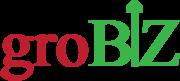 Branding and Digital Marketing Agency- groBIZ